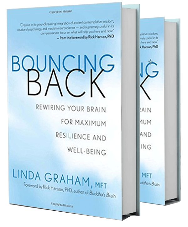 Bouncing Back Book by Linda Graham