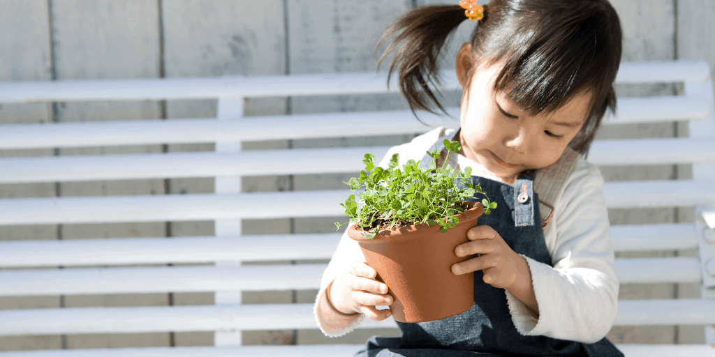 A child holding a small potted tree to plant